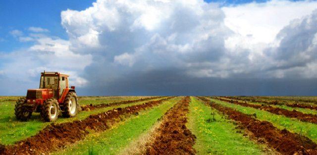 Земля для инвестора. Перечень свободных сельхозземель в Ачитском районе.